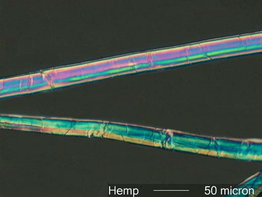 The Laboratory Nylon Fibers 68